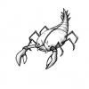 creatures-espace23