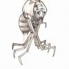 creatures-espace5